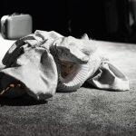 "Alytaus miesto teatro spektaklis ""Kitų žmonių gyvenimas yra kitų žmonių gyvenimas"". Rež. Gildas Aleksa. Foto Donatas Ališauskas"